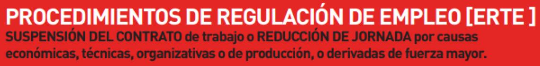 PROCEDIMIENTO DE REGULACIÓN DE EMPLEO CCOO MAKRO CASH & CARRY